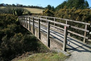 A footbridge on the Carnon Valley Trial